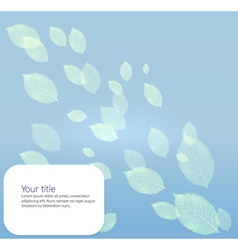 Background with transparents leaves vector