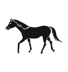 Horse icon in black style isolated on white vector