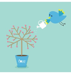 Love tree in the pot heart flower bird with vector