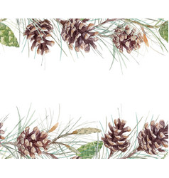 watercolor fir cone pattern vector image vector image