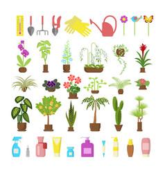 window gardening infographic elements vector image vector image