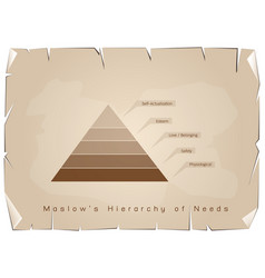 hierarchy of needs chart of human motivation on ol vector image