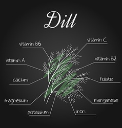 Nutrients list for dill on chalkboard backdrop vector