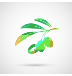 Olive oil decorative olive branch vector