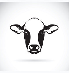 cow face design on white background farm animal vector image