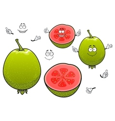 Mexican tropical cartoon guava fruits characters vector image vector image