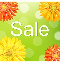 Sale Poster With Gerber vector image vector image