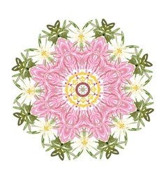 Floral frame circle for your design vector