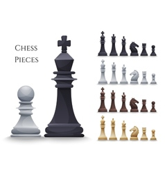 Chess figures big set vector