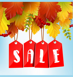 autumn sale banner with colorful leaves vector image