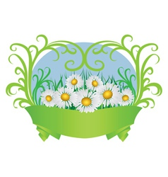 Daisies and ribbon vector image