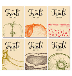 natural fruits hand drawn poster set vector image vector image