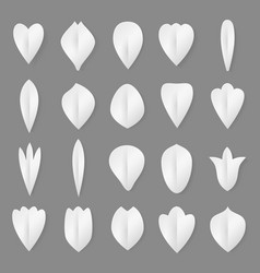 Paper flowers petal and leaves set 3d vector