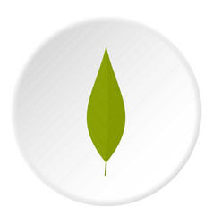 Green leaf of willow icon circle vector