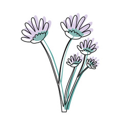 Watercolor silhouette of hand drawing lilac daisy vector