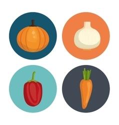 Healthy food graphic vector