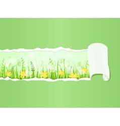 Beautiful green meadow under Ripped Paper vector image