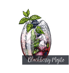 Blackberry mojito cocktail vector