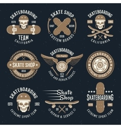 Skateboarding Emblems In Color vector image vector image