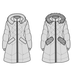 the sketch womens snow jacket with hood vector image vector image