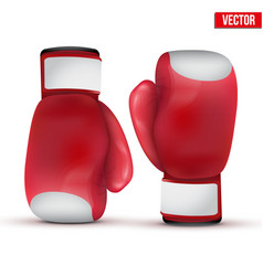 Boxing gloves isolated on white background vector image