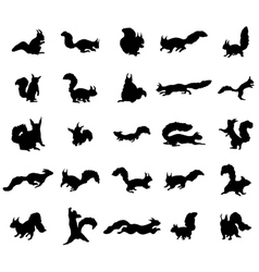 Squirrel silhouettes set vector