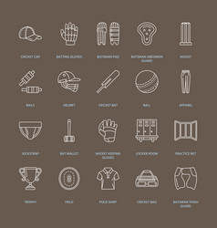 line icons of cricket sport game ball bat vector image