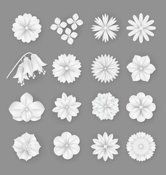 paper flowers set 3d origami abstract vector image
