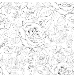 Rose seamless vector image