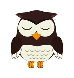 Owl bird animal design vector