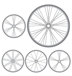 different bicycle wheels on a white background vector image