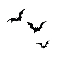 Black silhouettes of bats on a white background vector image
