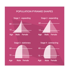 Four different types of population pyramids charts vector