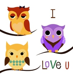 Cartoon owls set vector image vector image