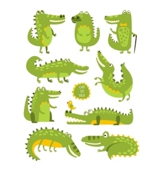 Crocodile cute character in different poses vector