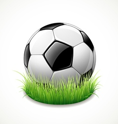football on green grass vector image vector image