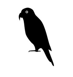 Lory parrot silhouette icon in flat style vector