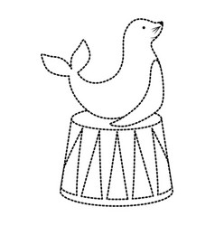 seal animal design vector image vector image