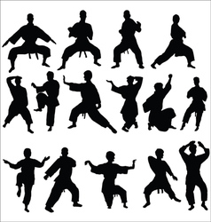 Karate kata pose vector image