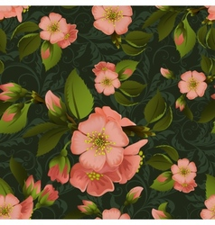Vintage floral seamless pattern with beautiful vector image vector image