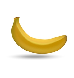 Figure ripe banana on a white background vector image vector image