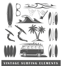Vintage surfing elements vector image