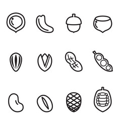 nut icon set vector image