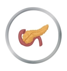 Pancreas icon in cartoon style isolated on white vector image
