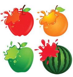 Fruit  apple orange green apple vector