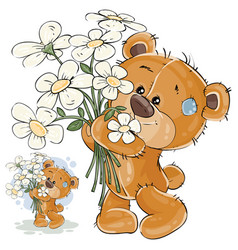 a brown teddy bear holding vector image vector image