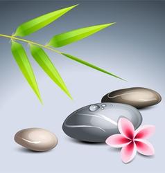 zen theme vector image