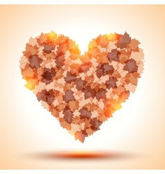 Heart shape from autumn leaves vector image