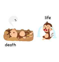 opposite words death and life vector image vector image