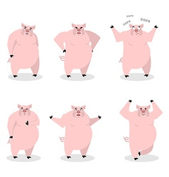 Pig set of different poses Expression of wild boar vector image